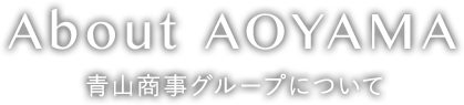 About AOYAMA 青山商事グループについて